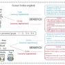 Cursuri de limbă engleză